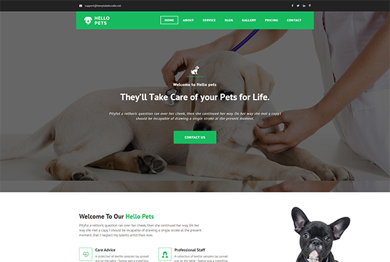 Animal and Pets Care HTML Website Template